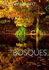 Moving Art: Bosques